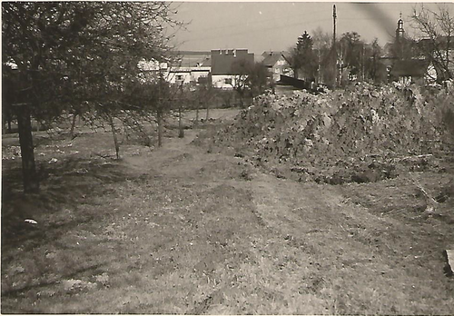 Schwarz-Weiß Foto von einer Wiese