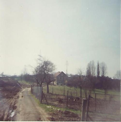 Foto eines Feldwegs mit einem Haus im Hintergrund