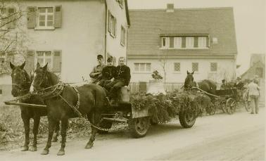 Pferde mit Wagen