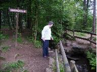Foto eines Mannes im Wald an der Quelle