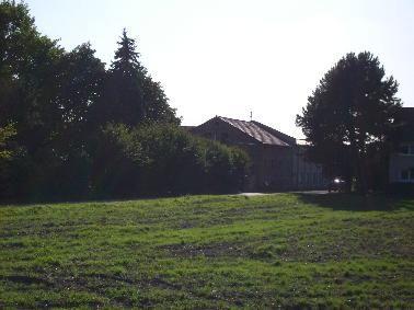 Feld mit im Hitergrund stehenden Bäumen und Haus