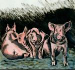Zeichnung von Schweinen